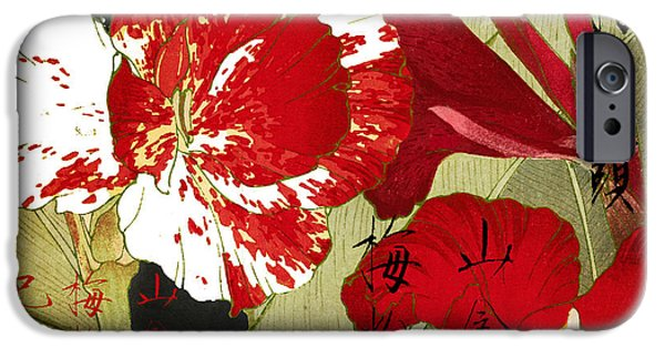 Flower Still Life Prints iPhone Cases - China Red Canna iPhone Case by Mindy Sommers