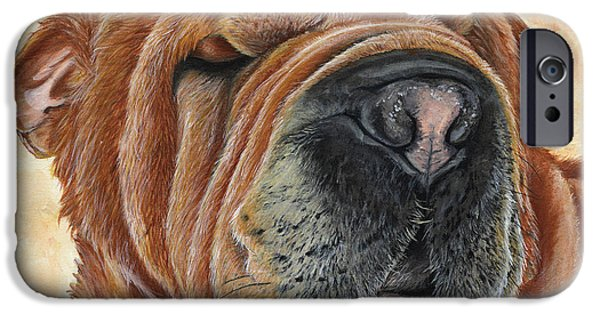 Puppies iPhone Cases - Cider iPhone Case by Twyla Francois