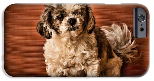 Recently Sold -  - Black Dog iPhone Cases - Cissy The Shih Tzu iPhone Case by Janice Rae Pariza