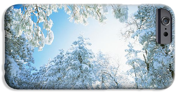 Snowy Day iPhone Cases - Cleveland National Forest Ca Usa iPhone Case by Panoramic Images