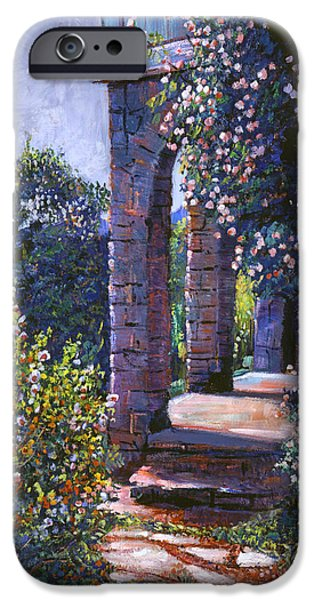 Pathway iPhone Cases - Climbing Roses iPhone Case by David Lloyd Glover