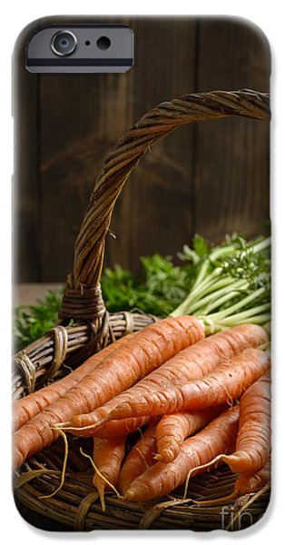 Fresh Produce iPhone Cases - Close Up Dirty Carrots iPhone Case by Amanda And Christopher Elwell