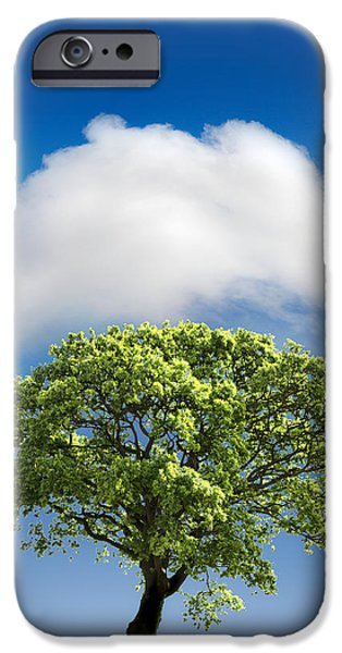 Summer iPhone Cases - Cloud Cover iPhone Case by Mal Bray