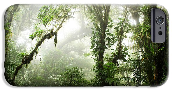 Jungle iPhone Cases - Cloud Forest iPhone Case by Nicklas Gustafsson