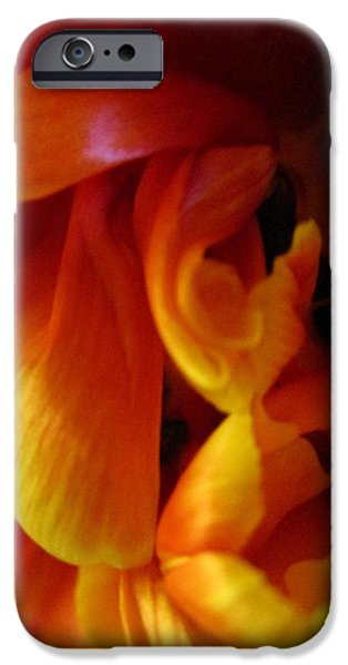 Redish iPhone Cases - Cluster Clutter iPhone Case by Rosita Larsson