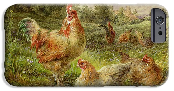 Farm Fields Paintings iPhone Cases - Cochin China Fowls iPhone Case by George Hickin