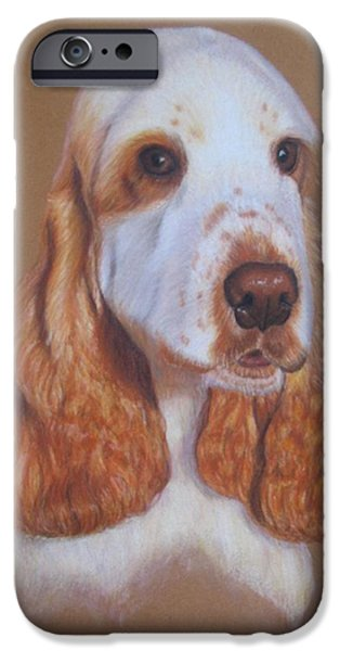 Dogs iPhone Cases - Cocker Spaniel iPhone Case by Luci Garten