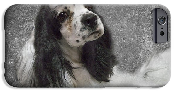 Black Dog iPhone Cases - Cocker Spaniel iPhone Case by Rebecca Cozart