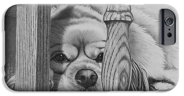 Dogs iPhone Cases - Cocker Spaniel iPhone Case by Stephen McCall