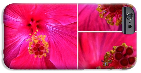 Althea iPhone Cases - Collage with Red Hibiscus  iPhone Case by Madalena Lobao-Tello