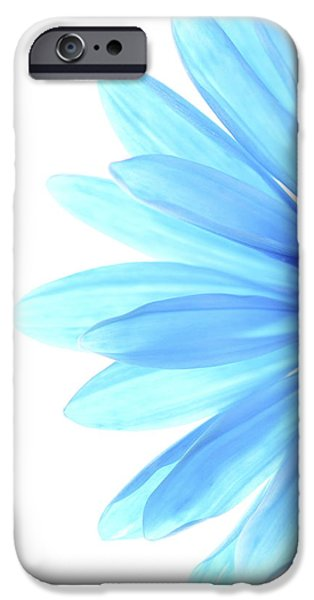 Daisy iPhone Cases - Color Me Blue iPhone Case by Rebecca Cozart