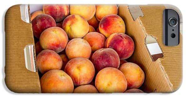 Locally Grown iPhone Cases - Colorado Peaches Ready for Market iPhone Case by Teri Virbickis