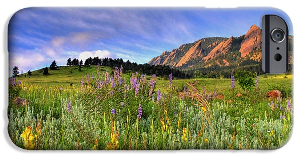 Nature Landscape iPhone Cases - Colorado Wildflowers iPhone Case by Scott Mahon