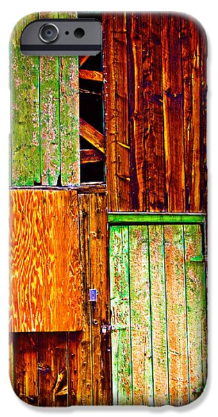 Old Barn iPhone Cases - Colorful Old Barn Wood iPhone Case by James BO  Insogna