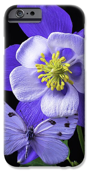 Columbine iPhone Cases - Columbine With Butterfly iPhone Case by Garry Gay