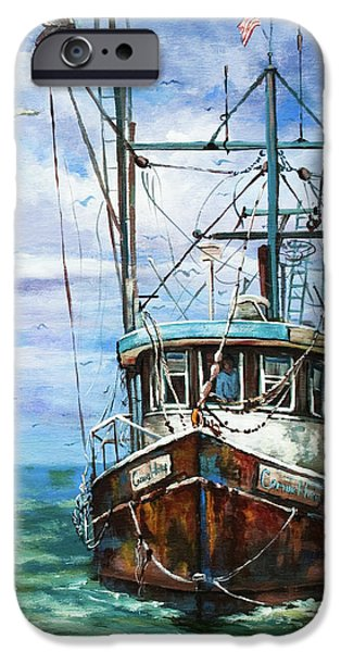 Gulf iPhone Cases - Coming Home iPhone Case by Dianne Parks