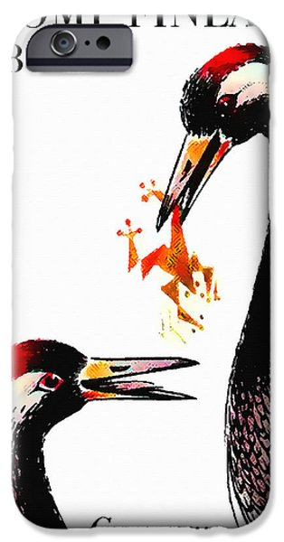 Young Paintings iPhone Cases - Common Crane 1 iPhone Case by Lanjee Chee