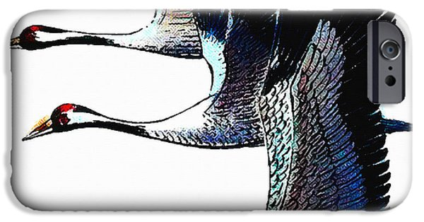 Young Paintings iPhone Cases - Common Crane 3 iPhone Case by Lanjee Chee