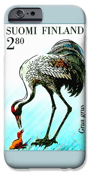 Young Paintings iPhone Cases - Common Crane 4 iPhone Case by Lanjee Chee
