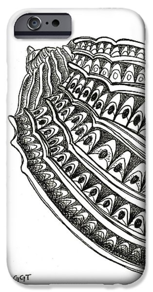 Pen And Ink iPhone Cases - Conch Shell 1 iPhone Case by Stephanie Troxell