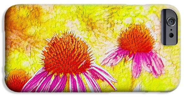 Abstracted Coneflowers Paintings iPhone Cases - Cone Flower  iPhone Case by Lanjee Chee
