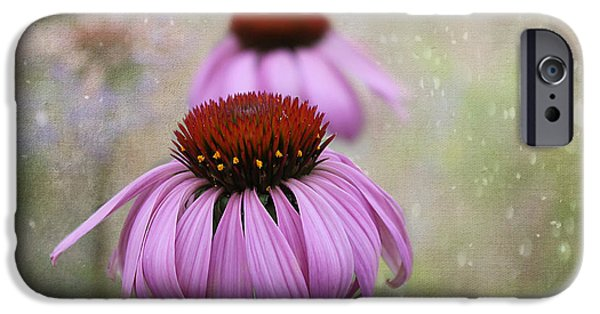 Meadow Photographs iPhone Cases - Coneflower Dream iPhone Case by Nina Silver