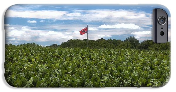 Confederate Flag iPhone Cases - Confederate Flag in Tobacco Field iPhone Case by Benanne Stiens