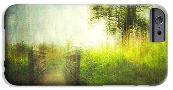 Nature Abstract iPhone Cases - Connies Backyard 02 iPhone Case by Violet Gray