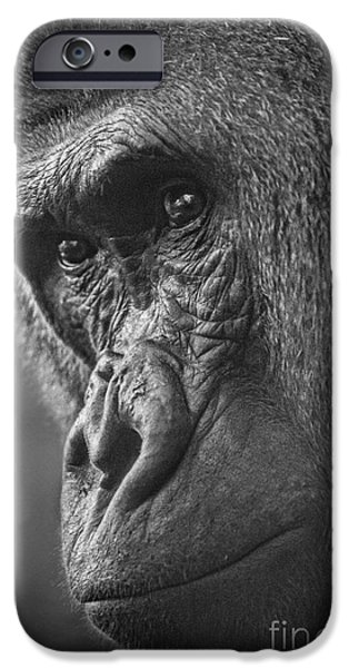 Monotone iPhone Cases - Contemplate iPhone Case by Jamie Pham