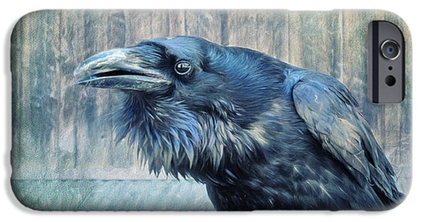 Fauna iPhone Cases - Conversation  iPhone Case by Priska Wettstein