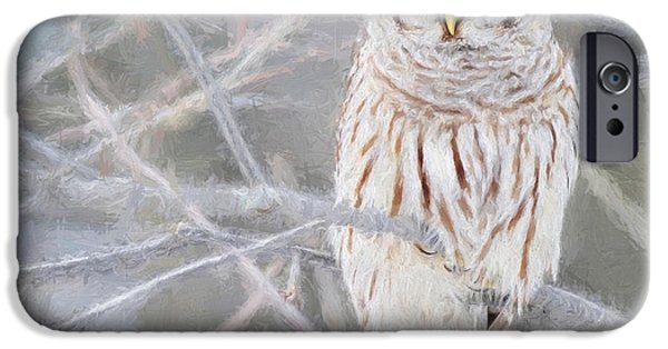 Snow Scene Mixed Media iPhone Cases - Cool and Confident iPhone Case by Robert Albrecht