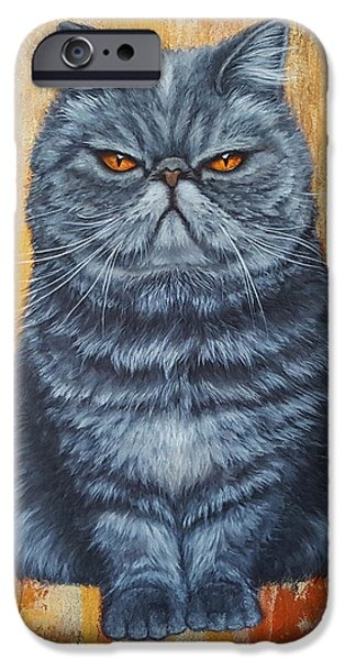 Gray Hair iPhone Cases - Cool Cat iPhone Case by Kathleen Wong