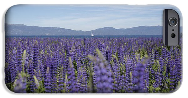 Lake Tahoe iPhone Cases - Cool Summer Breeze iPhone Case by Jeremy Jensen