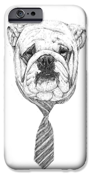 Animal Drawings iPhone Cases - Cooldog iPhone Case by Balazs Solti