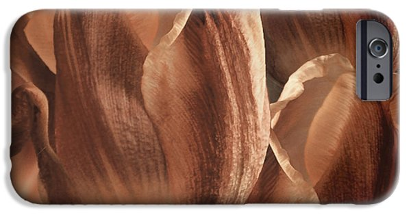 Sienna iPhone Cases - Copper Tulips iPhone Case by Mindy Sommers