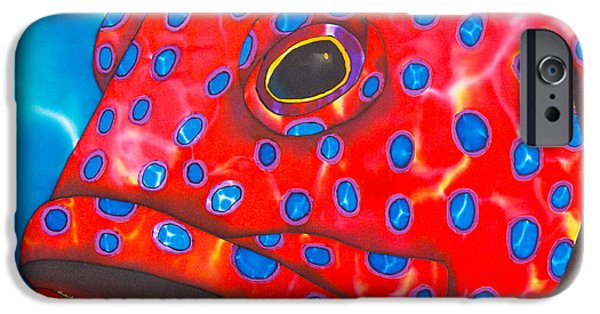 Grouper Print On Canvas iPhone Cases - Coral Groupper II iPhone Case by Daniel Jean-Baptiste