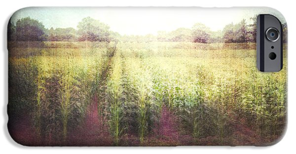 Nature Abstract iPhone Cases - Cornfields iPhone Case by Violet Gray
