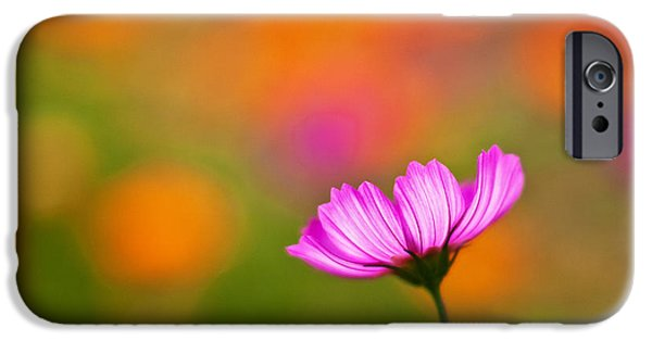 Cosmo iPhone Cases - Cosmo Pastels iPhone Case by Mike Reid
