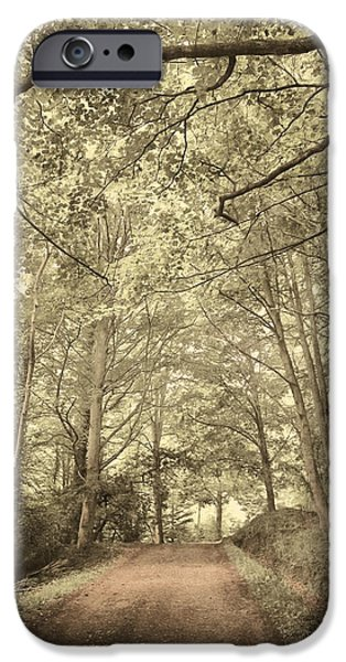 Afraid iPhone Cases - Cosy Path iPhone Case by Svetlana Sewell