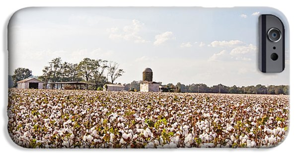 Arkansas iPhone Cases - Cotton Crop iPhone Case by Scott Pellegrin