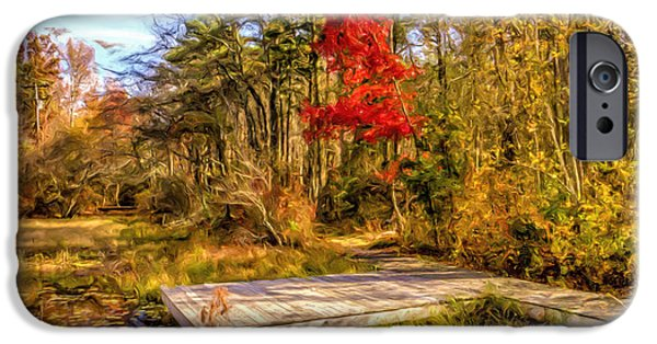 Business iPhone Cases - Country Autumn scenic iPhone Case by Geraldine Scull