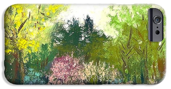 House Pastels iPhone Cases - Country Garden iPhone Case by David Patterson