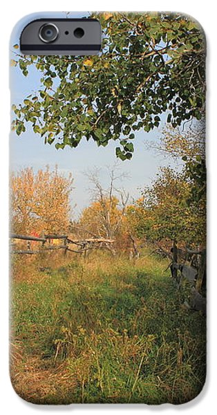 Country Lane iPhone Case by Jim Sauchyn