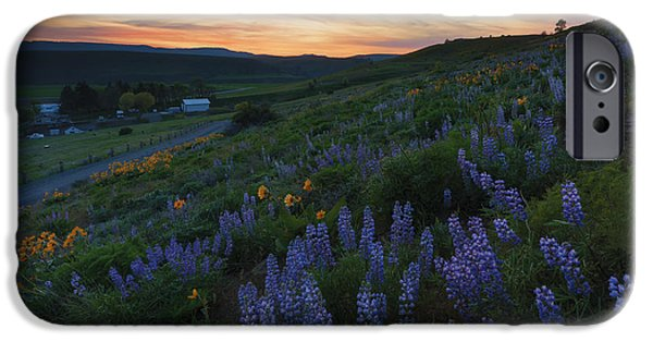 Meadow Photographs iPhone Cases - Country Meadow Sunset iPhone Case by Mike Dawson