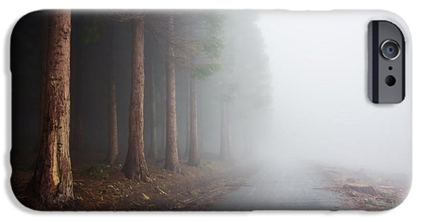 Asphalt iPhone Cases - Country Road Near Foggy Forest iPhone Case by Mikel Martinez de Osaba