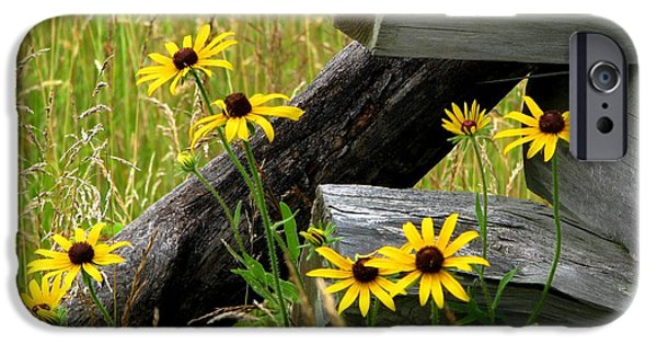 Meadow Photographs iPhone Cases - Country Roads iPhone Case by Angela Davies