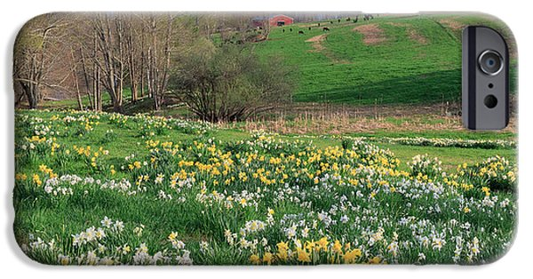 Spring Landscape iPhone Cases - Country Spring iPhone Case by Bill  Wakeley