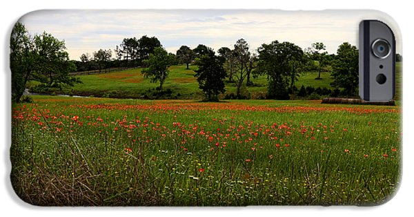 Meadow Photographs iPhone Cases - Country Spring iPhone Case by Judy Vincent