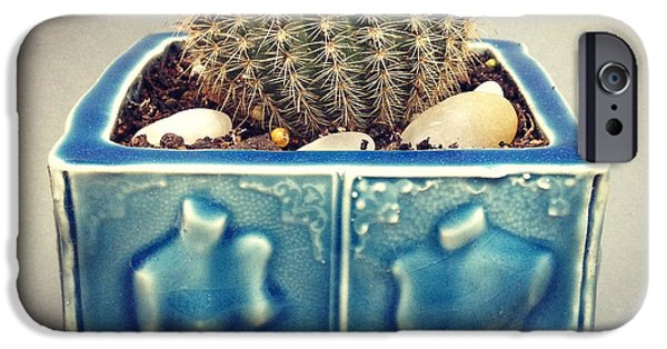 Garden Ceramics iPhone Cases - Couple Cactus Planter iPhone Case by Evelyn Taylor Designs