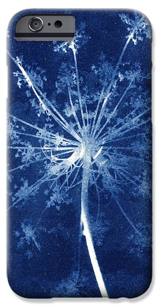 Keck iPhone Cases - Cow parsley iPhone Case by Elspeth Ross